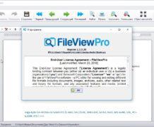 FileViewPro ключ лицензионный 2020